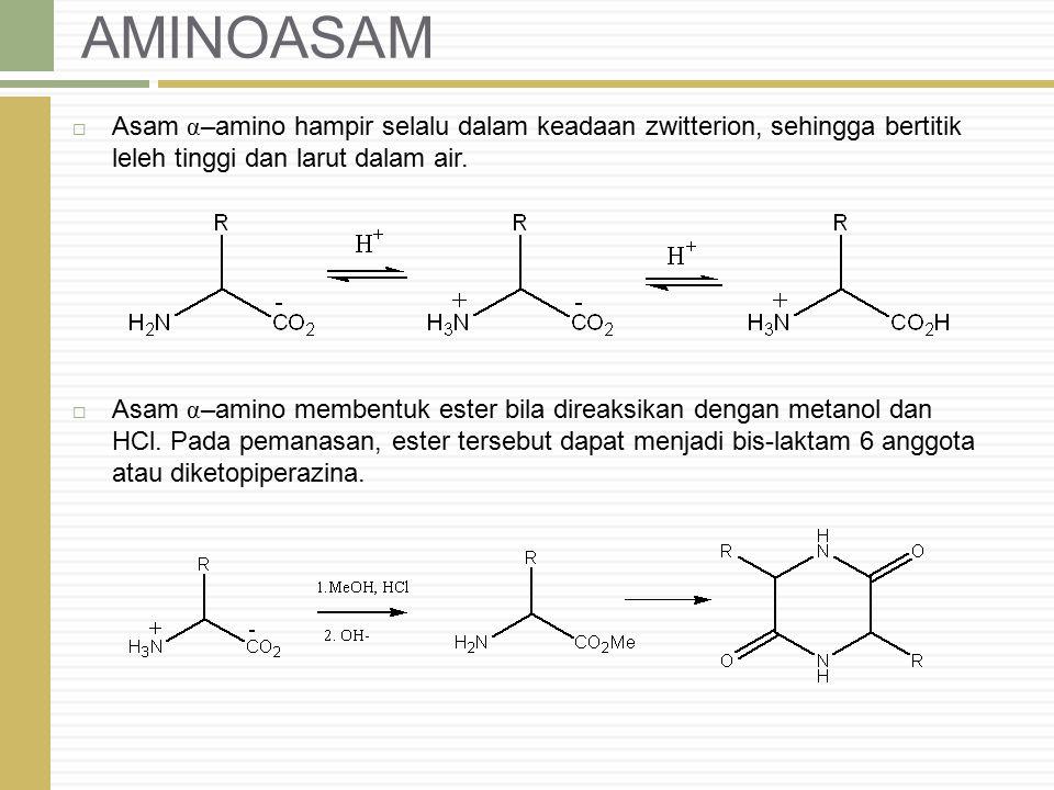 AMINOASAM Asam α–amino hampir selalu dalam keadaan zwitterion, sehingga bertitik leleh tinggi dan larut dalam air.