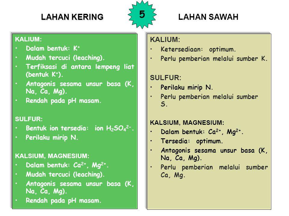 5 LAHAN KERING LAHAN SAWAH KALIUM: SULFUR: KALIUM: Dalam bentuk: K+