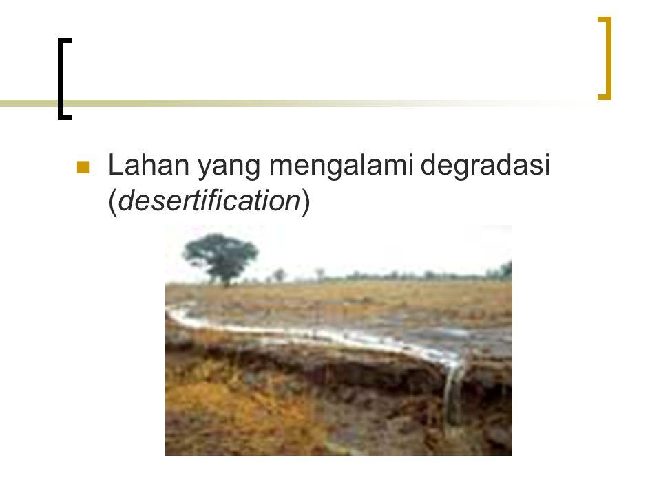 Lahan yang mengalami degradasi (desertification)