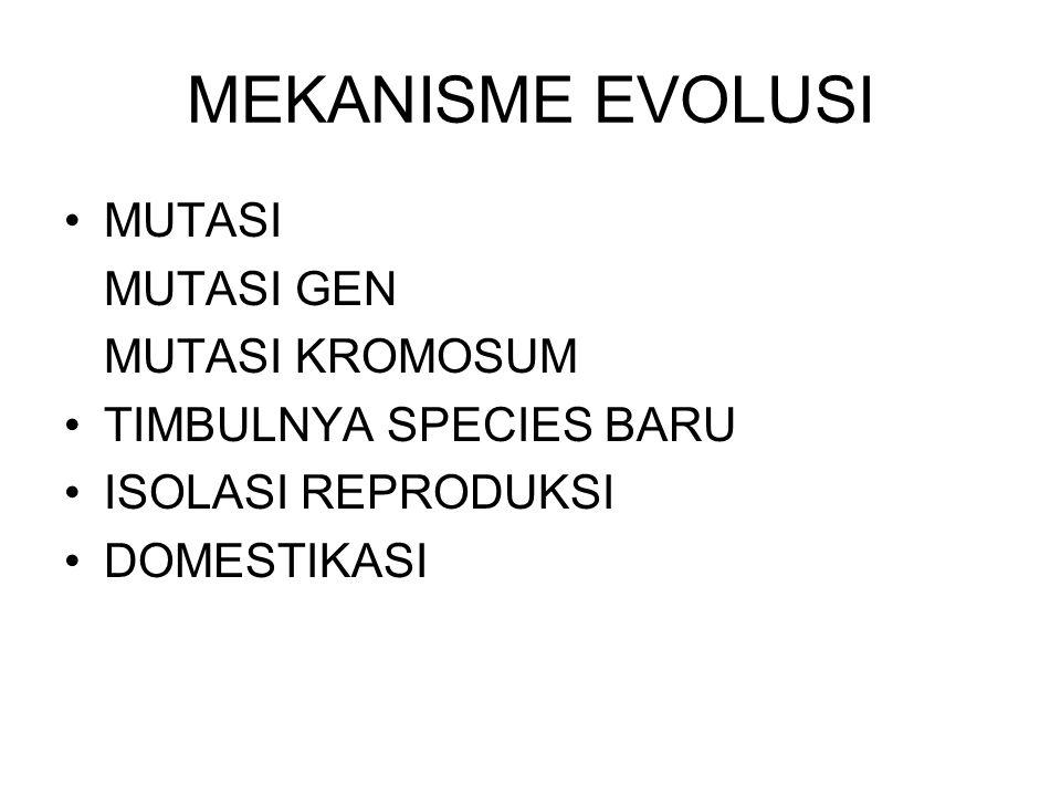MEKANISME EVOLUSI MUTASI MUTASI GEN MUTASI KROMOSUM