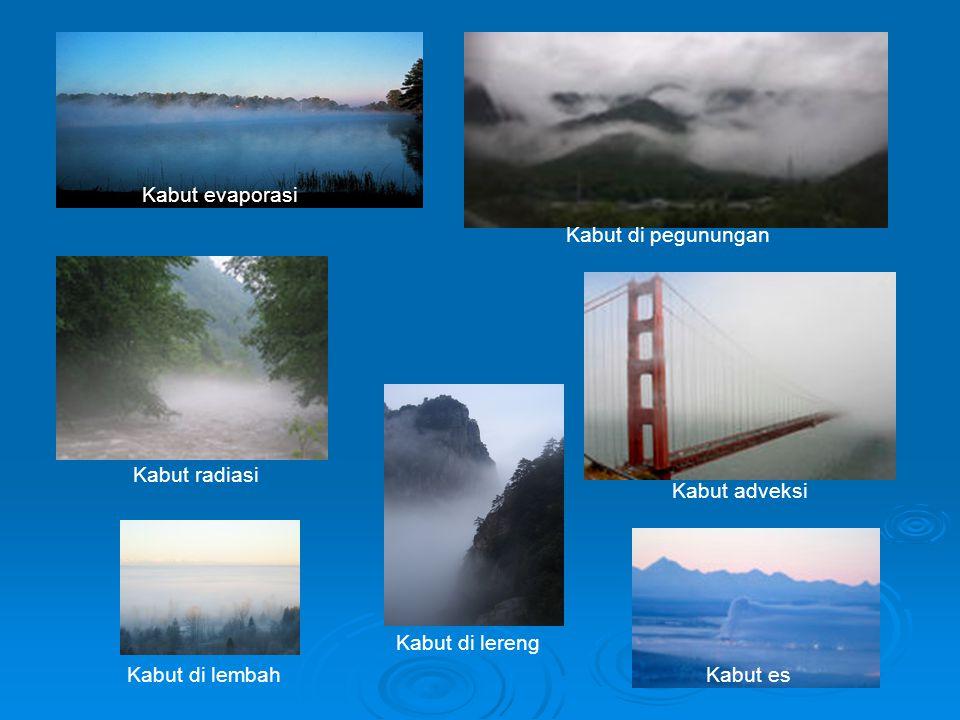 Kabut evaporasi Kabut di pegunungan. Kabut radiasi. Kabut adveksi. Kabut di lembah. Kabut di lereng.