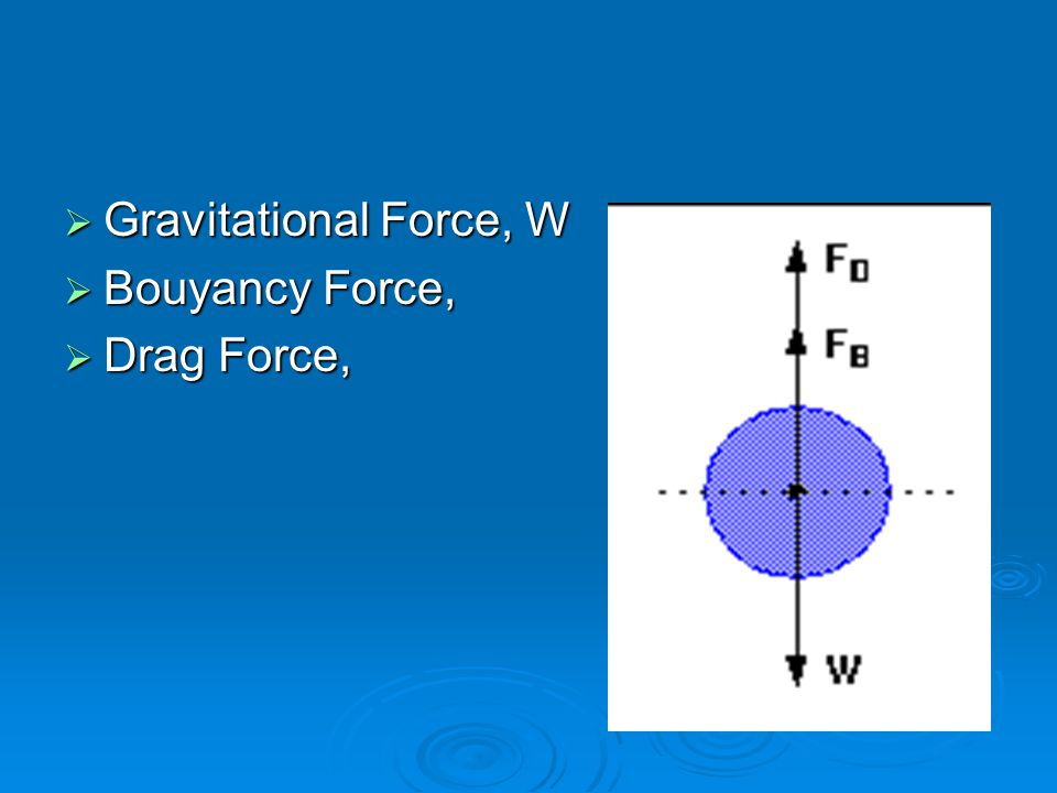 Gravitational Force, W Bouyancy Force, Drag Force,