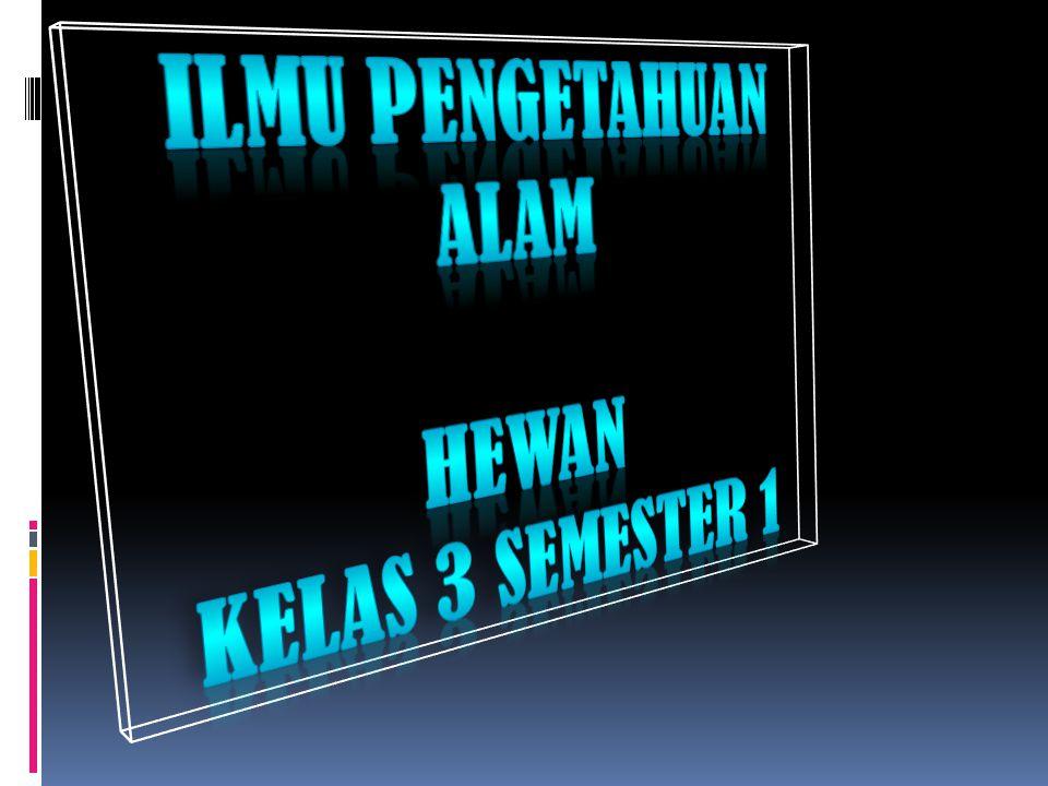 ILMU PENGETAHUAN ALAM HEWAN Kelas 3 semester 1