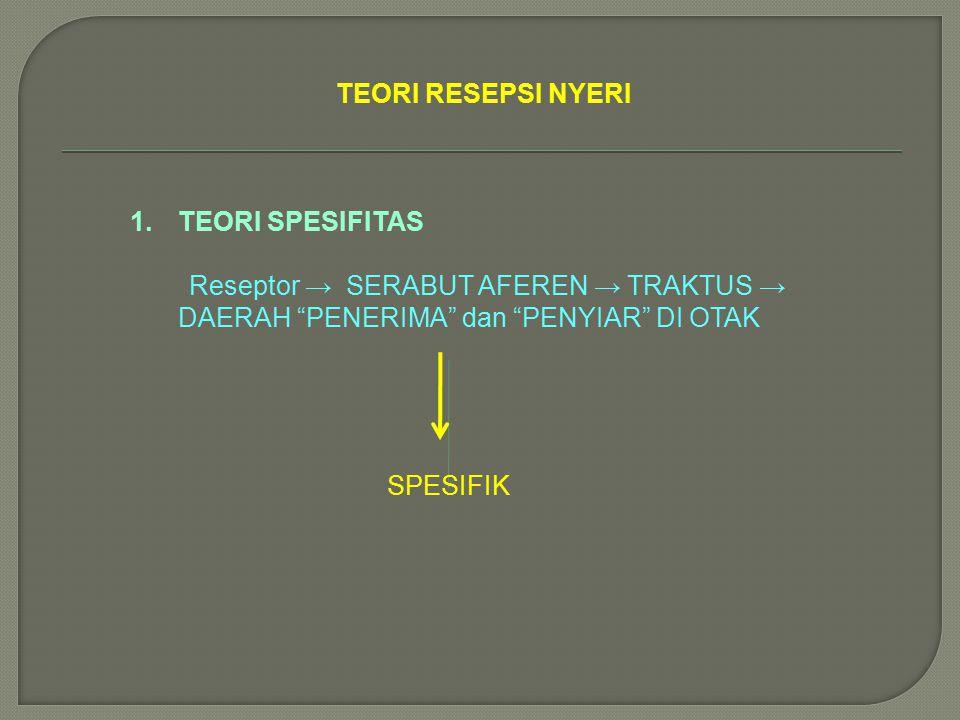 TEORI RESEPSI NYERI TEORI SPESIFITAS. Reseptor → SERABUT AFEREN → TRAKTUS → DAERAH PENERIMA dan PENYIAR DI OTAK.