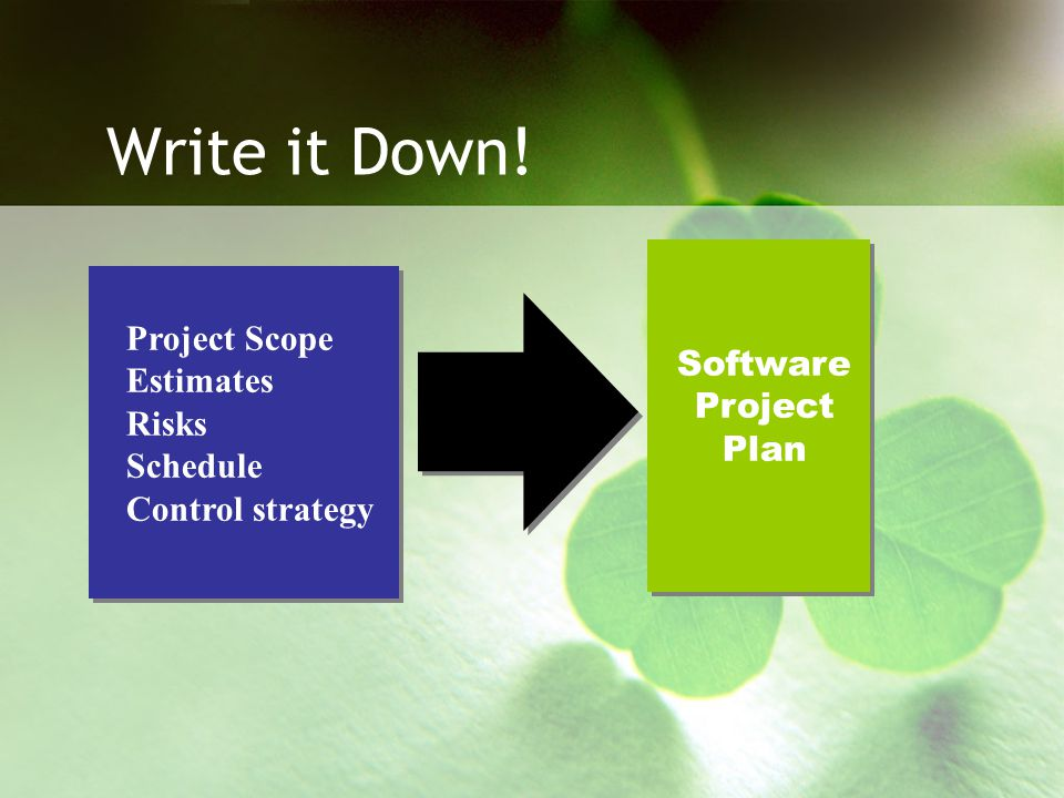 Write it Down! Project Scope Estimates Software Risks Project Schedule