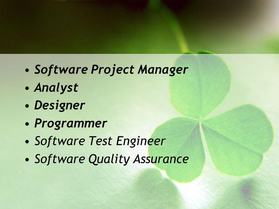 Software Project Manager