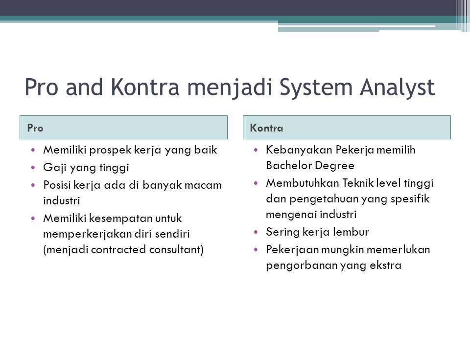 Pro and Kontra menjadi System Analyst