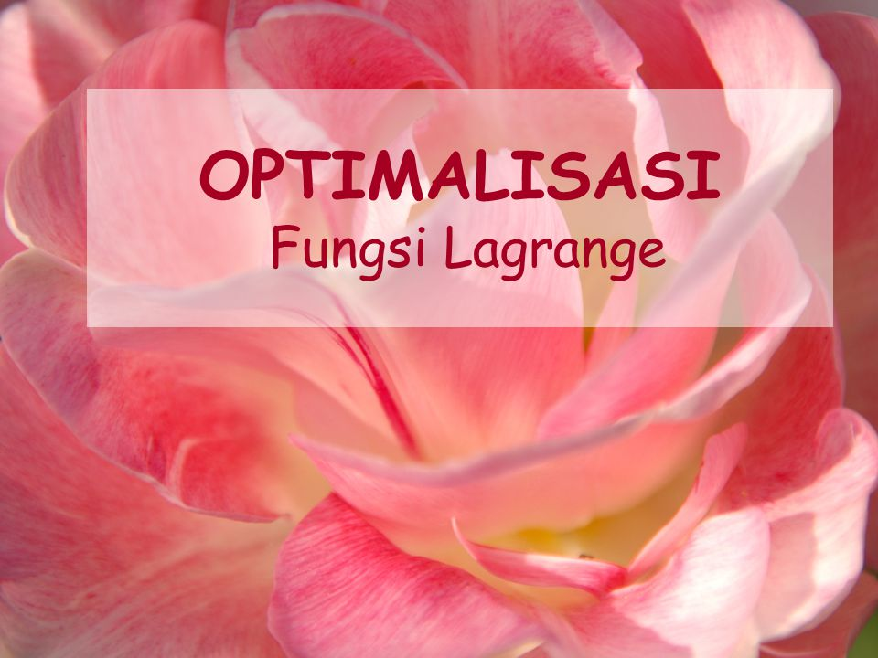 OPTIMALISASI Fungsi Lagrange