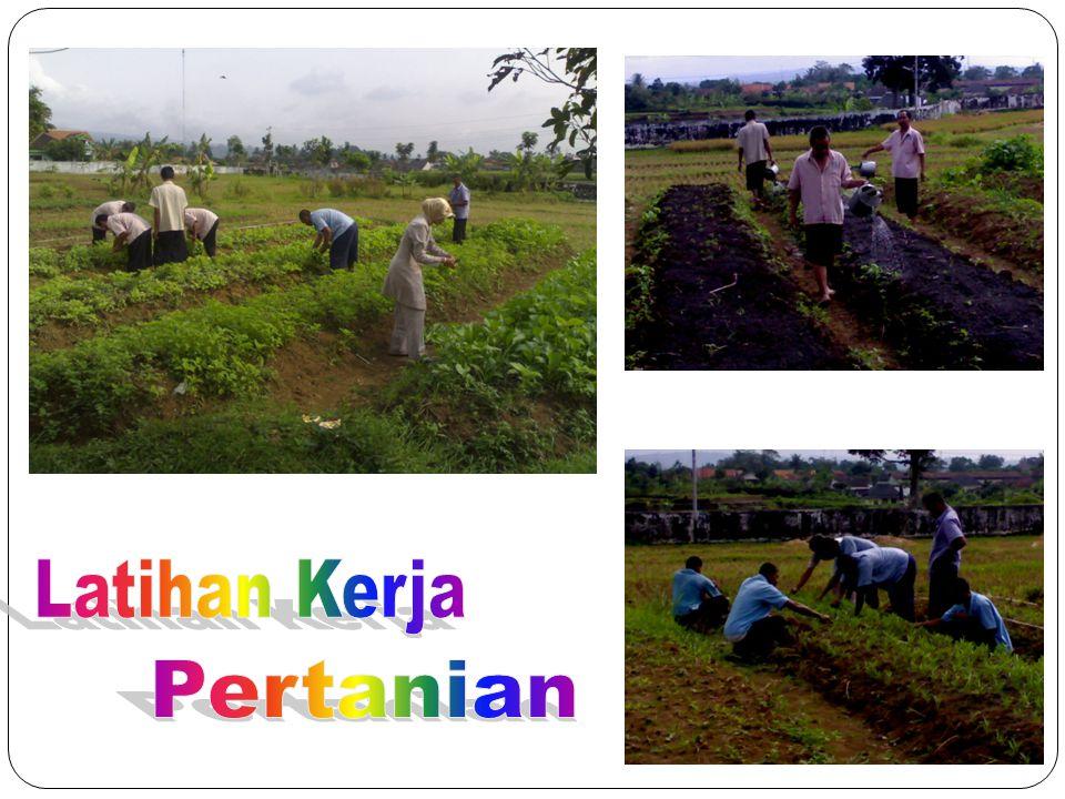 Latihan Kerja Pertanian