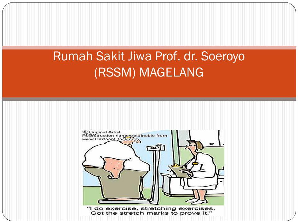 Rumah Sakit Jiwa Prof. dr. Soeroyo (RSSM) MAGELANG