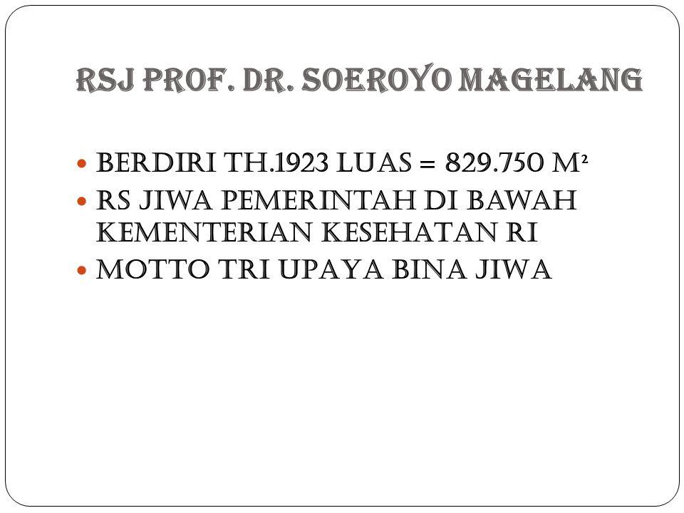 Rsj Prof. dr. Soeroyo Magelang