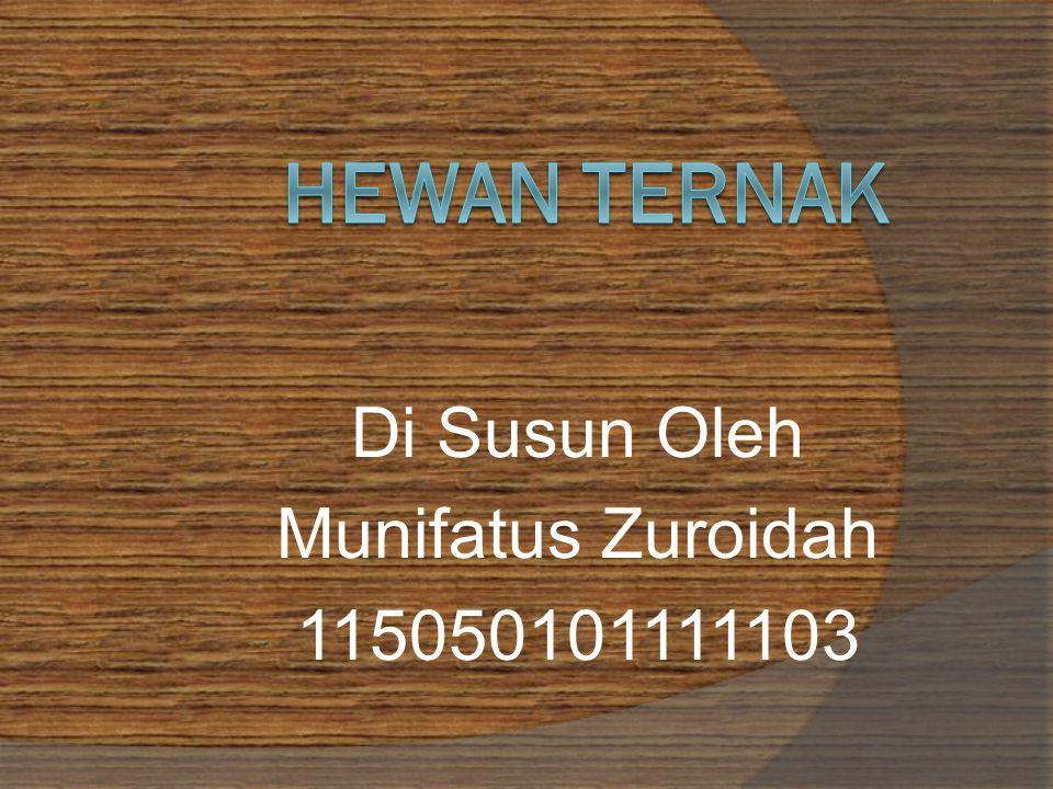 Di Susun Oleh Munifatus Zuroidah 115050101111103