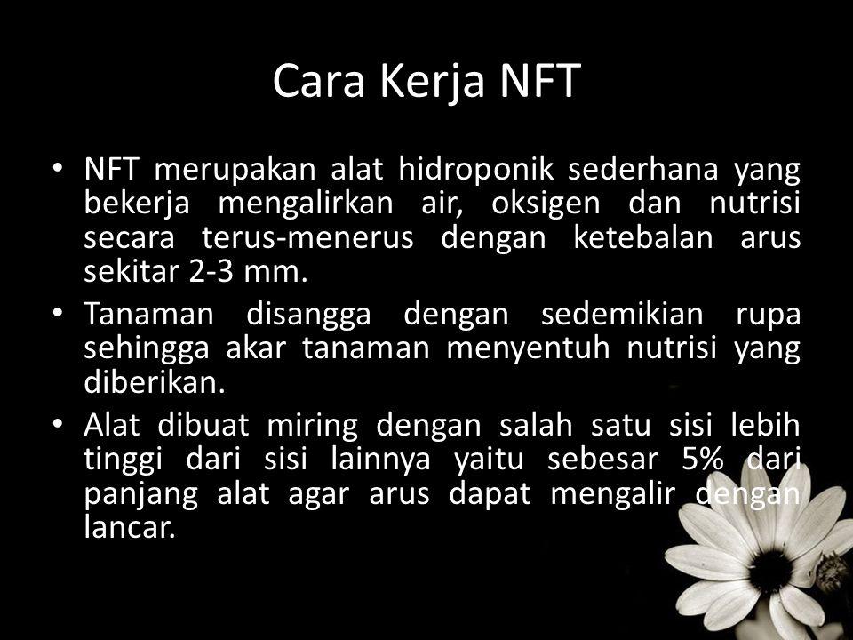 Cara Kerja NFT