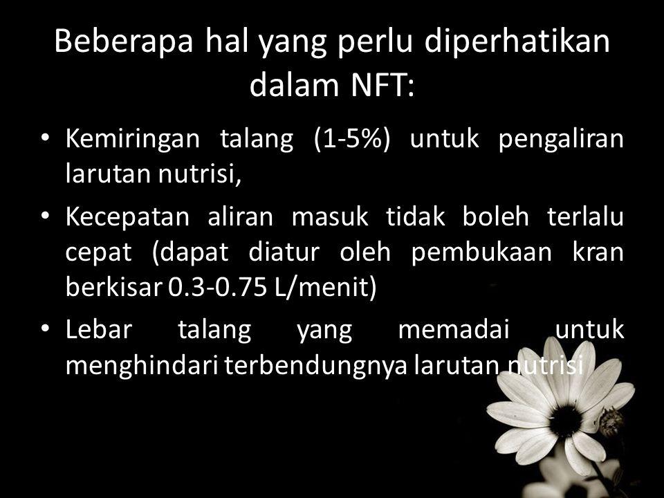Beberapa hal yang perlu diperhatikan dalam NFT: