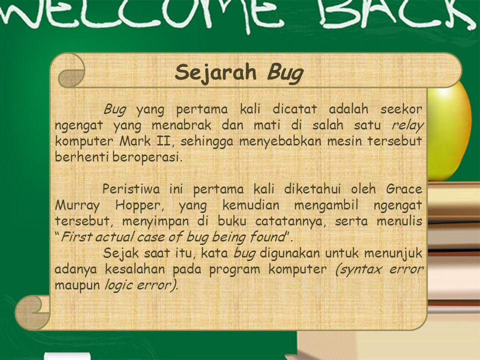Sejarah Bug