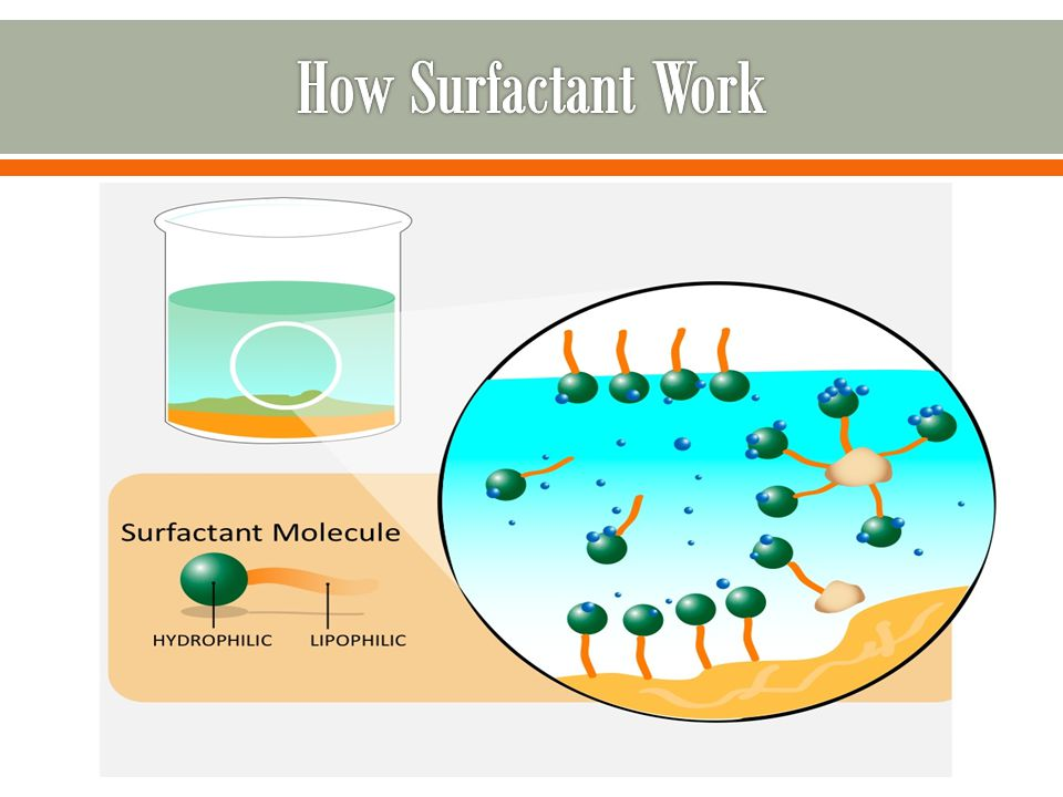 How Surfactant Work