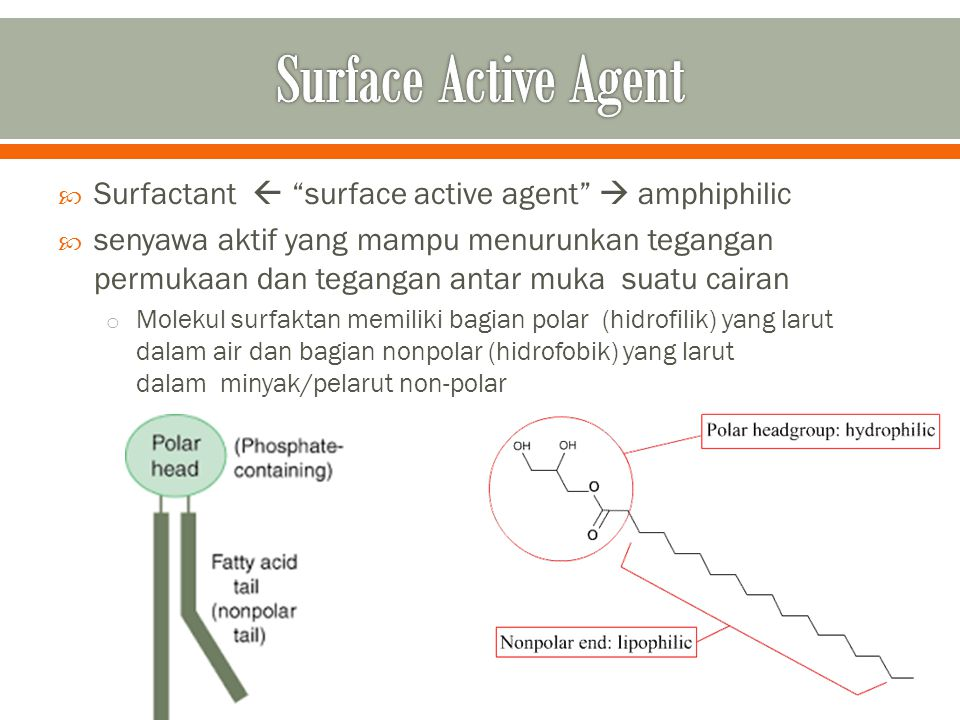 Surface Active Agent Surfactant  surface active agent  amphiphilic