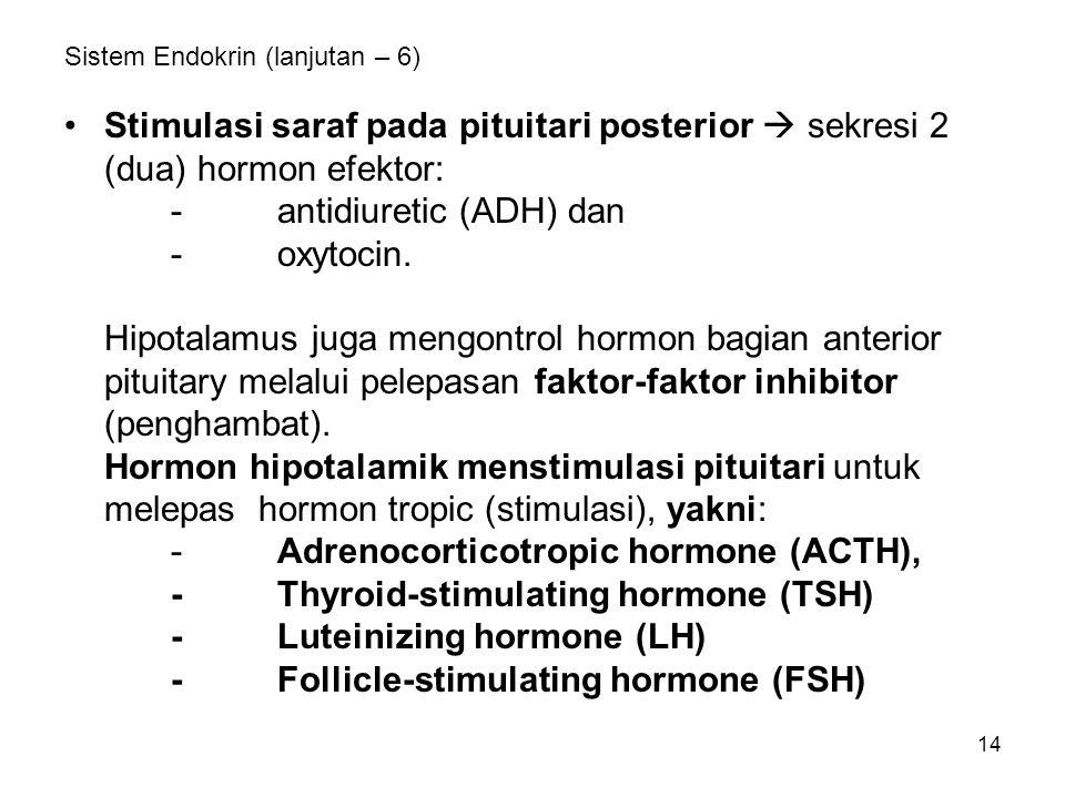 Sistem Endokrin (lanjutan – 6)