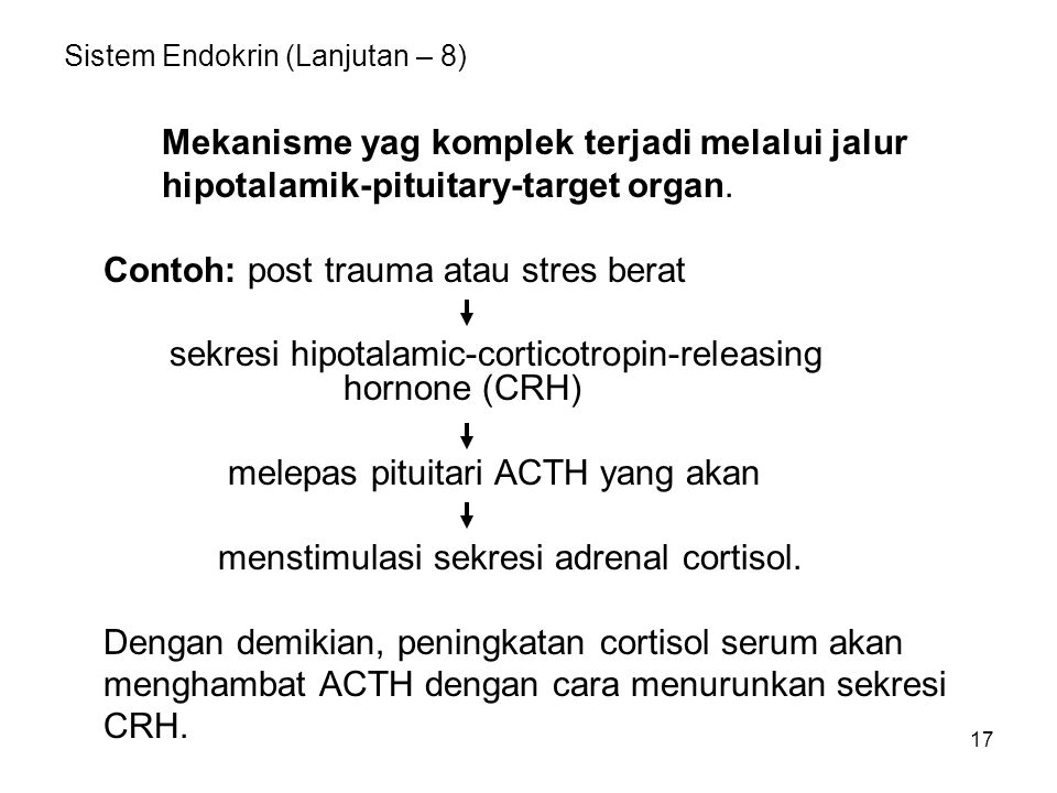 Sistem Endokrin (Lanjutan – 8)