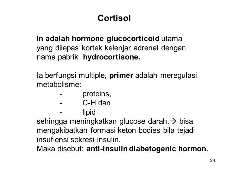 Cortisol In adalah hormone glucocorticoid utama