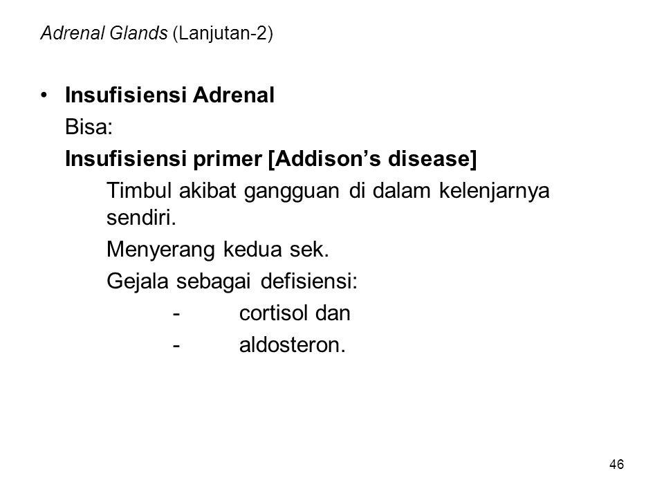 Adrenal Glands (Lanjutan-2)