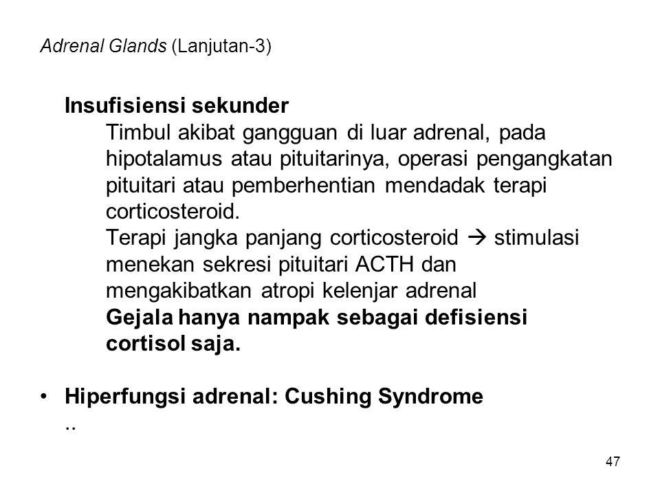 Adrenal Glands (Lanjutan-3)