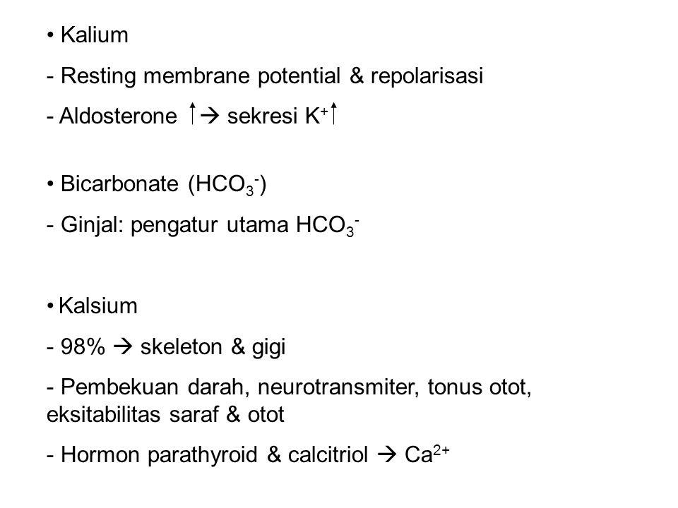 Kalium Resting membrane potential & repolarisasi. Aldosterone  sekresi K+ Bicarbonate (HCO3-) Ginjal: pengatur utama HCO3-