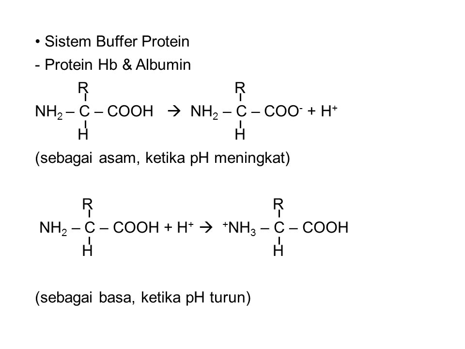 Sistem Buffer Protein Protein Hb & Albumin. R R. NH2 – C – COOH  NH2 – C – COO- + H+