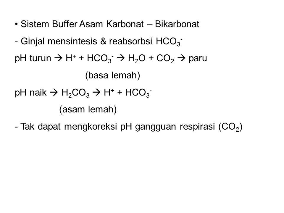 Sistem Buffer Asam Karbonat – Bikarbonat