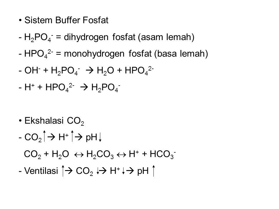 Sistem Buffer Fosfat - H2PO4- = dihydrogen fosfat (asam lemah) - HPO42- = monohydrogen fosfat (basa lemah)