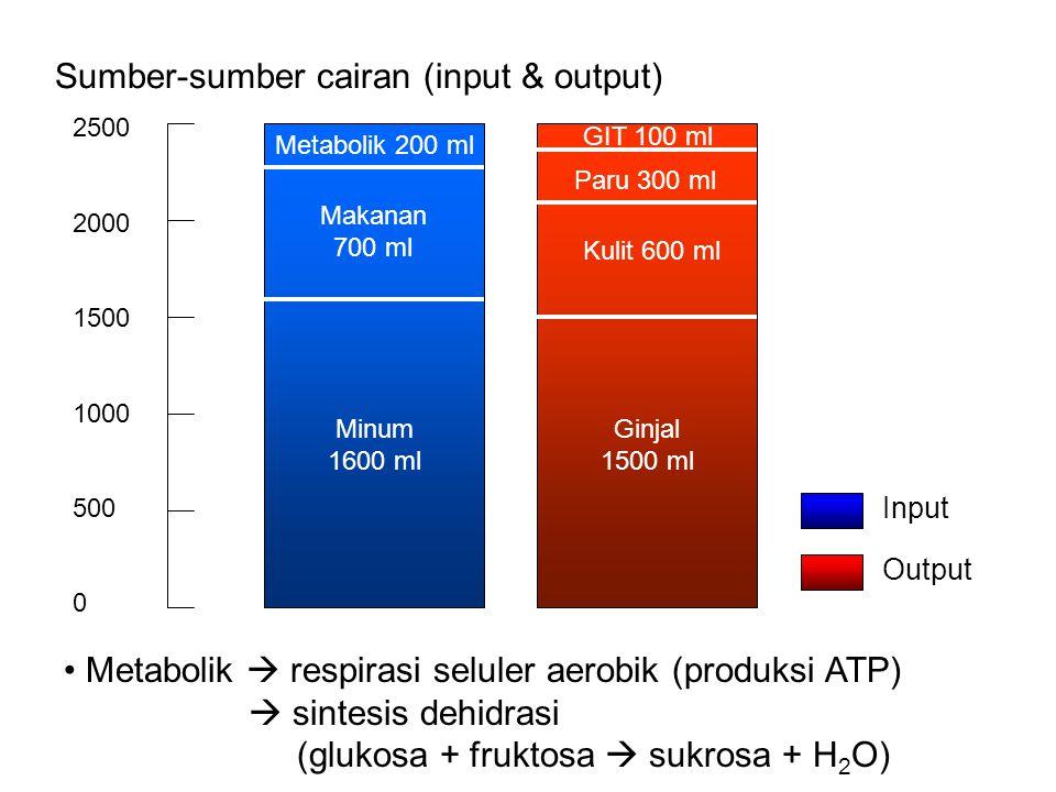 Sumber-sumber cairan (input & output)
