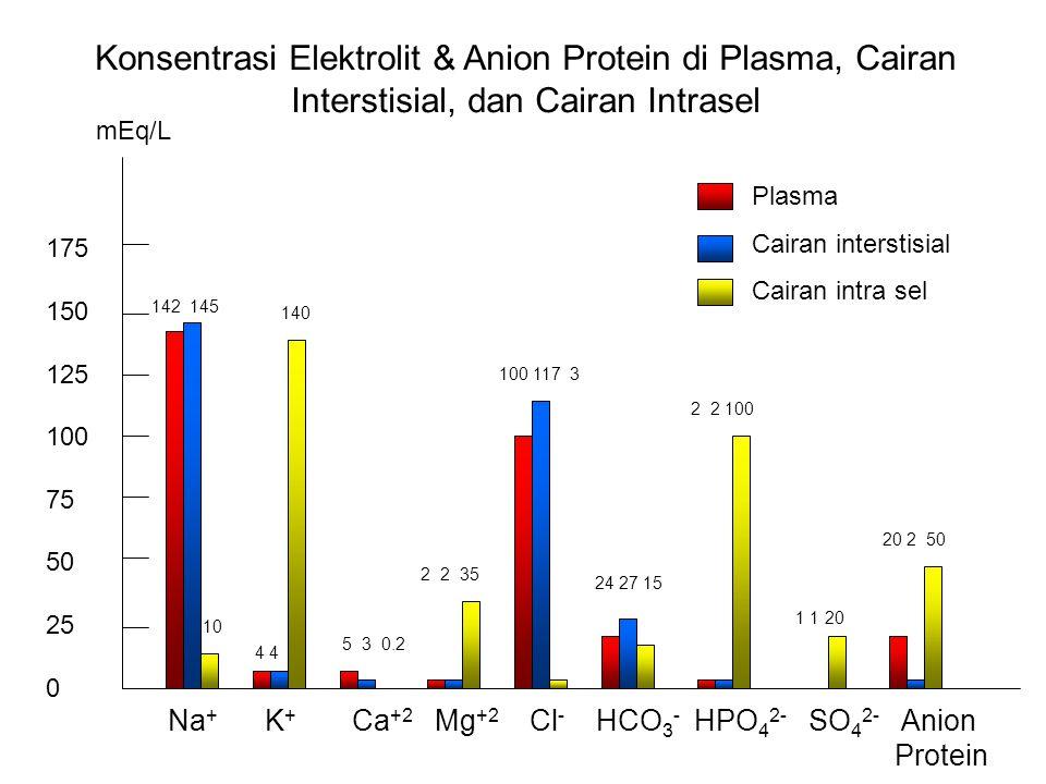 Konsentrasi Elektrolit & Anion Protein di Plasma, Cairan Interstisial, dan Cairan Intrasel