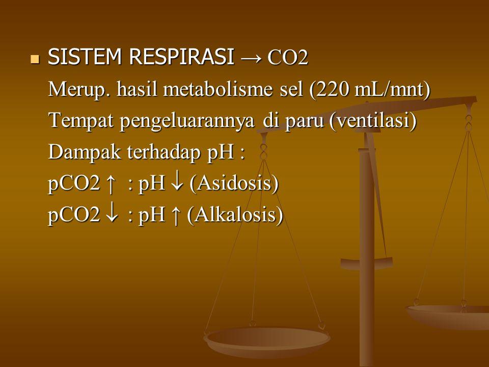 SISTEM RESPIRASI → CO2 Merup. hasil metabolisme sel (220 mL/mnt) Tempat pengeluarannya di paru (ventilasi)