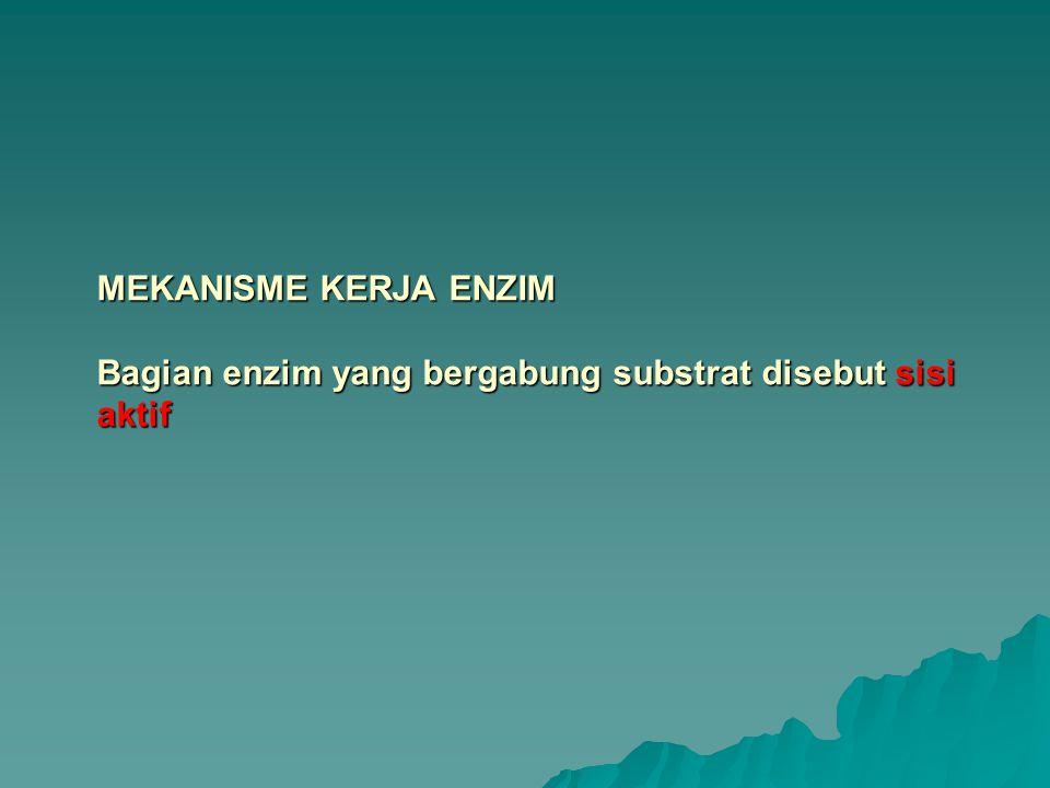 MEKANISME KERJA ENZIM Bagian enzim yang bergabung substrat disebut sisi aktif