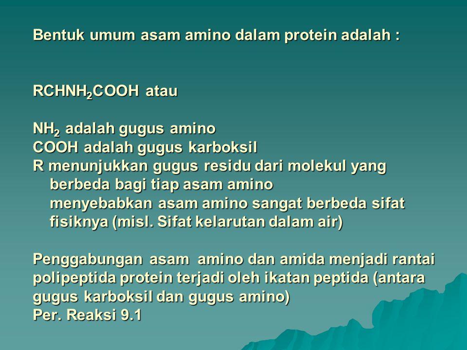 Bentuk umum asam amino dalam protein adalah : RCHNH2COOH atau NH2 adalah gugus amino COOH adalah gugus karboksil R menunjukkan gugus residu dari molekul yang berbeda bagi tiap asam amino menyebabkan asam amino sangat berbeda sifat fisiknya (misl.