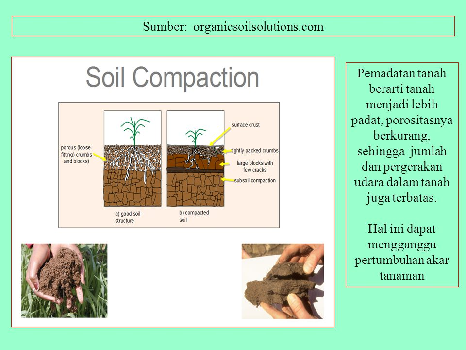 Sumber: organicsoilsolutions.com