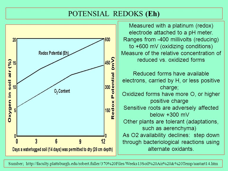 POTENSIAL REDOKS (Eh)