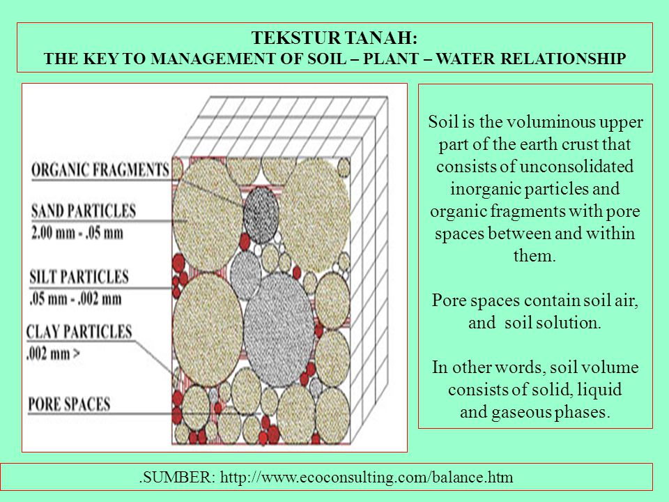 Pore spaces contain soil air, and soil solution.