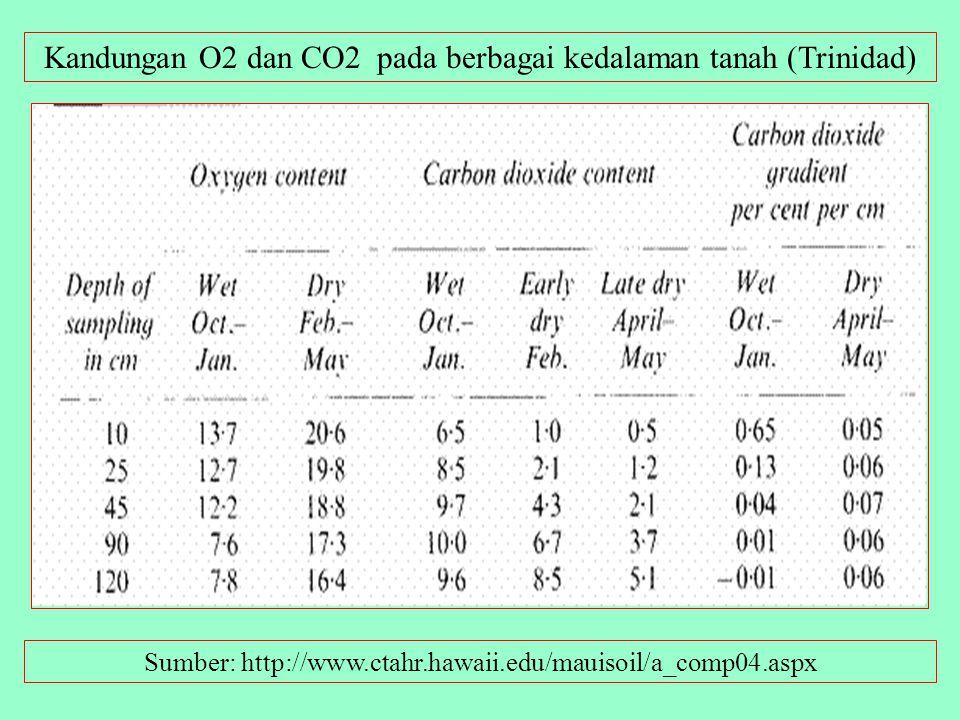 Kandungan O2 dan CO2 pada berbagai kedalaman tanah (Trinidad)