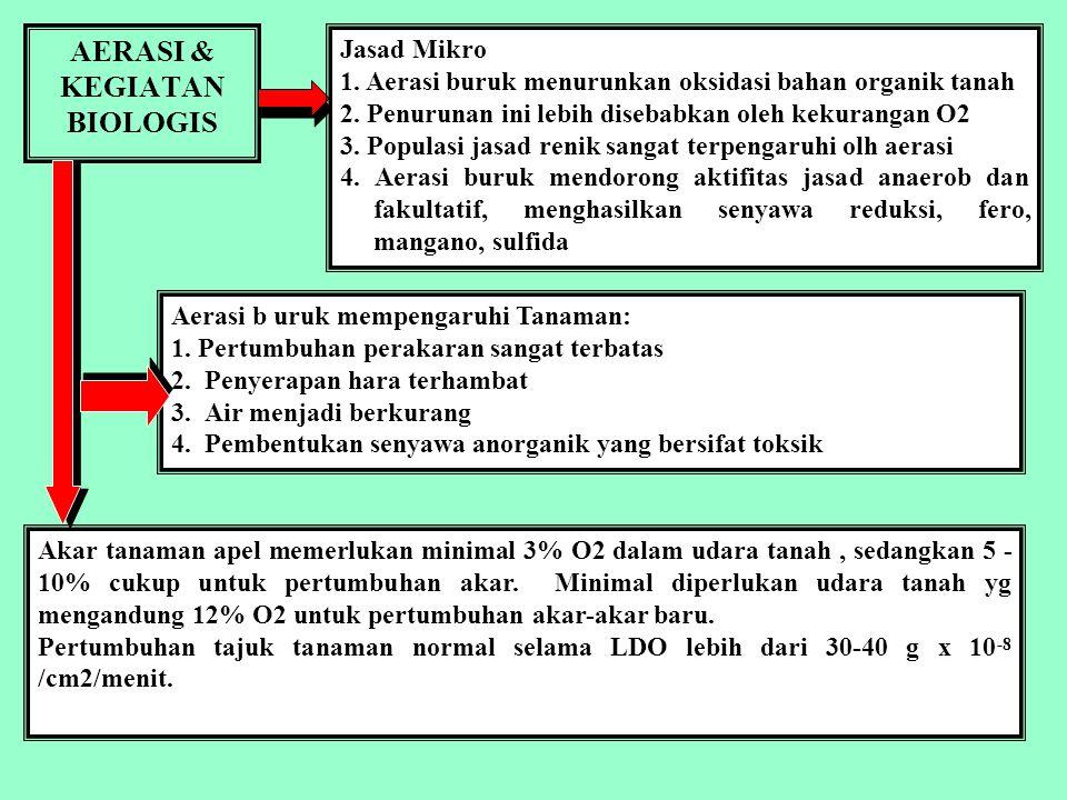 AERASI & KEGIATAN BIOLOGIS