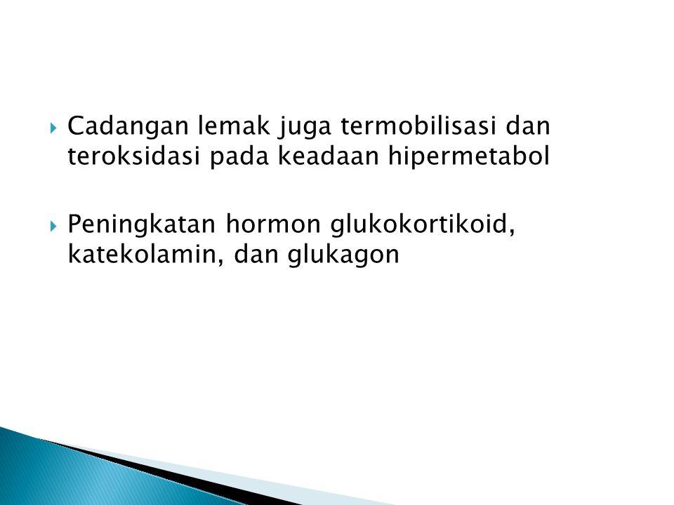 Cadangan lemak juga termobilisasi dan teroksidasi pada keadaan hipermetabol