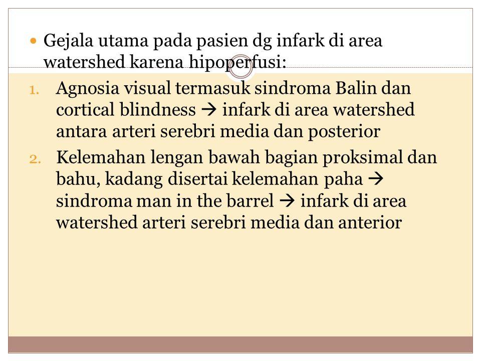 Gejala utama pada pasien dg infark di area watershed karena hipoperfusi: