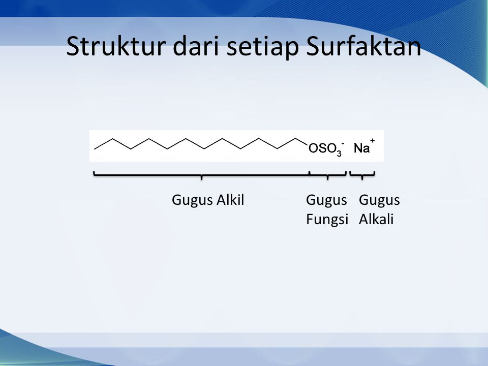 Struktur dari setiap Surfaktan