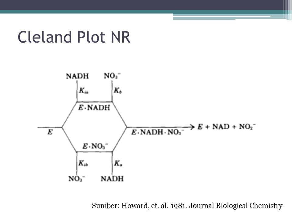 Nitrate reductase nadh ec ppt download 6 cleland plot ccuart Choice Image