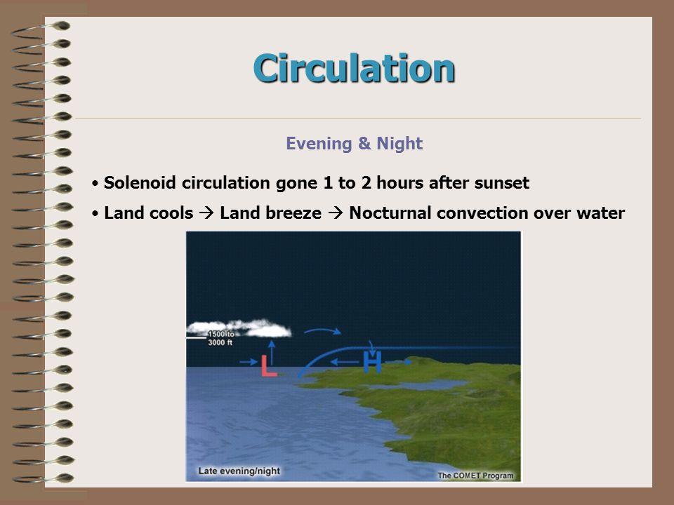 Circulation Evening & Night