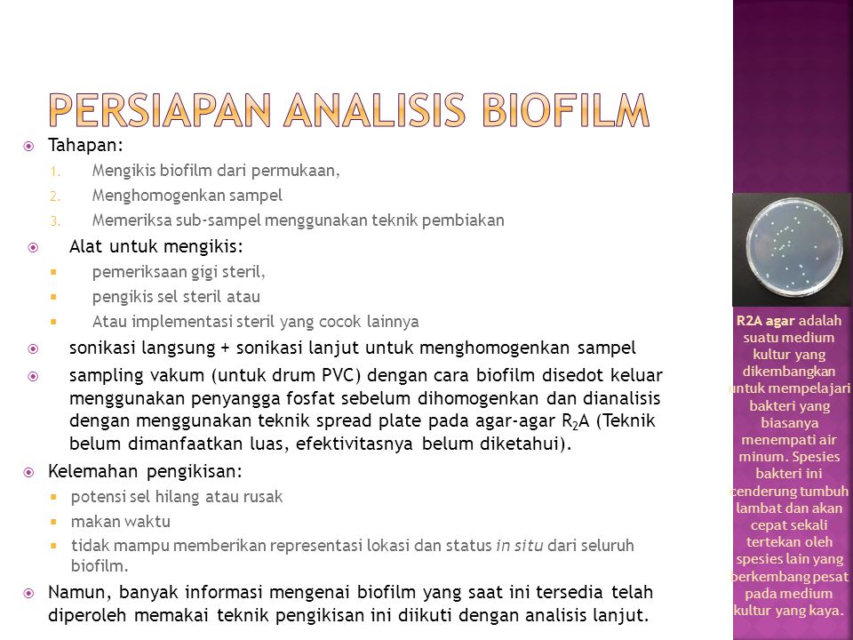 PERSIAPAN ANALISIS BIOFILM