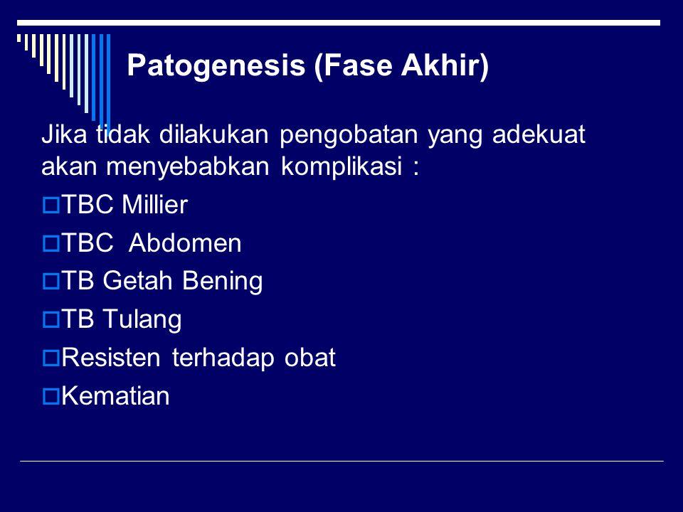 Patogenesis (Fase Akhir)