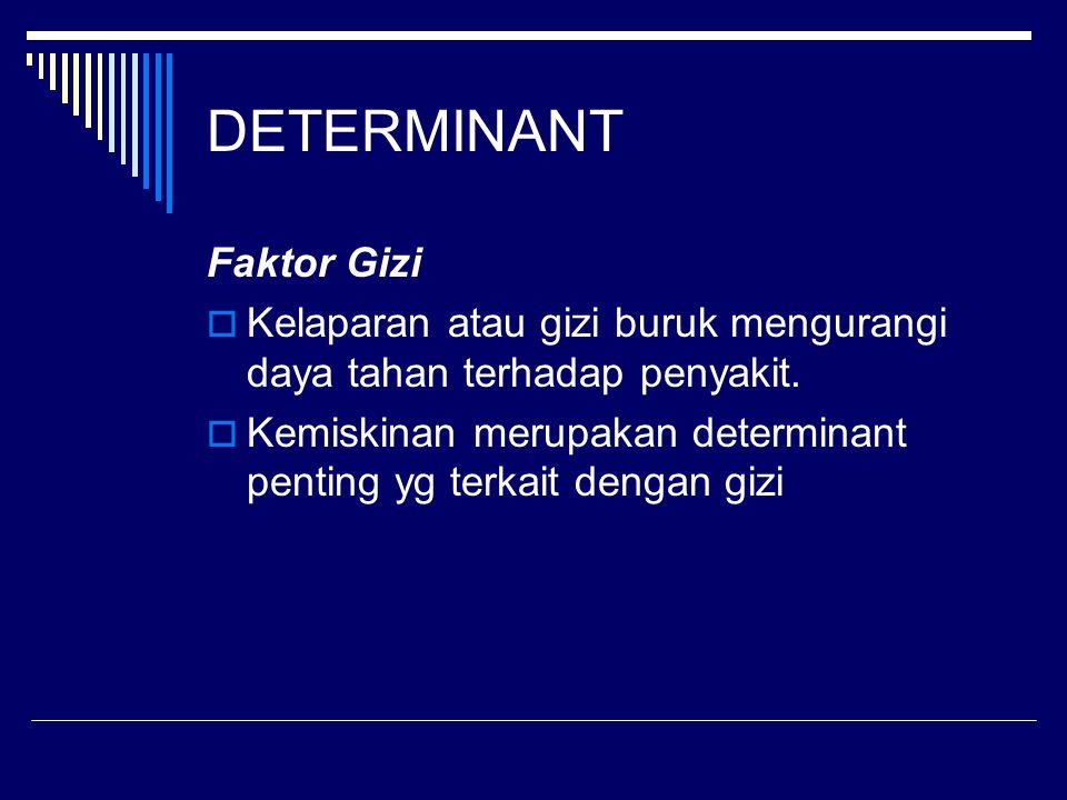 DETERMINANT Faktor Gizi