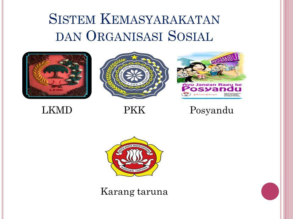 Sistem Kemasyarakatan dan Organisasi Sosial