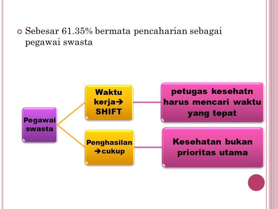 Sebesar 61.35% bermata pencaharian sebagai pegawai swasta
